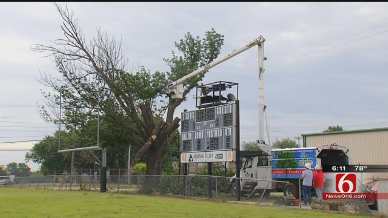 Broken Arrow's 'Touchdown Tree' Cut Down After Nearly 80 Years