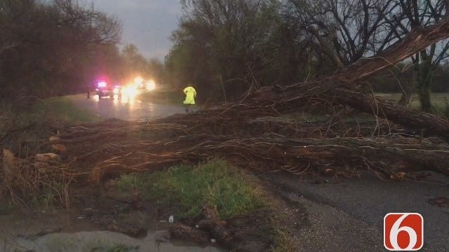 Tornado In North Tulsa Causes Tree To Fall On Truck Carrying Family Of Four