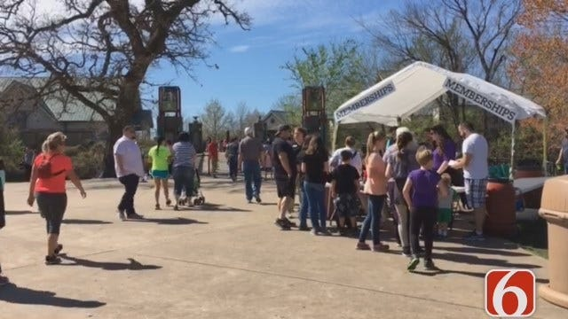 Emory Bryan Reports On Tulsa Zoo Vision Tax Projects