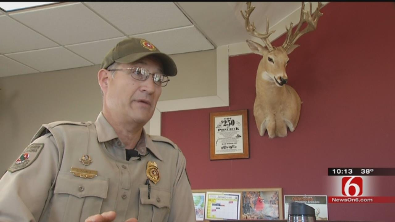 Man Violates Wildlife Laws That Keep Oklahoma Deer Population Thriving