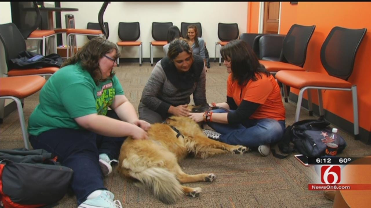Amid Tragedy, OSU's Pet Posse Provides Therapy To Grieving, Confused Students