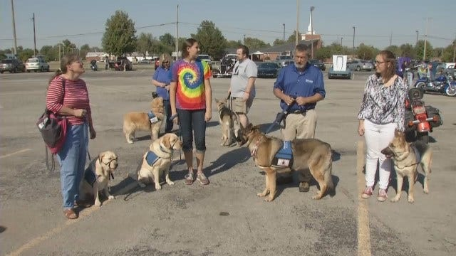 WEB EXTRA: Fundraiser Held For Therapetics Service Dogs Of Oklahoma