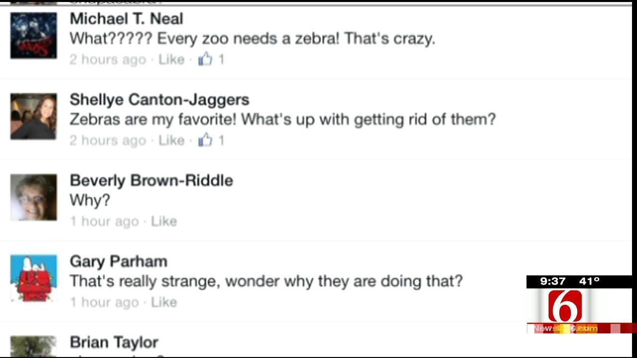 OK Talk: Does Every Zoo Need A Zebra?