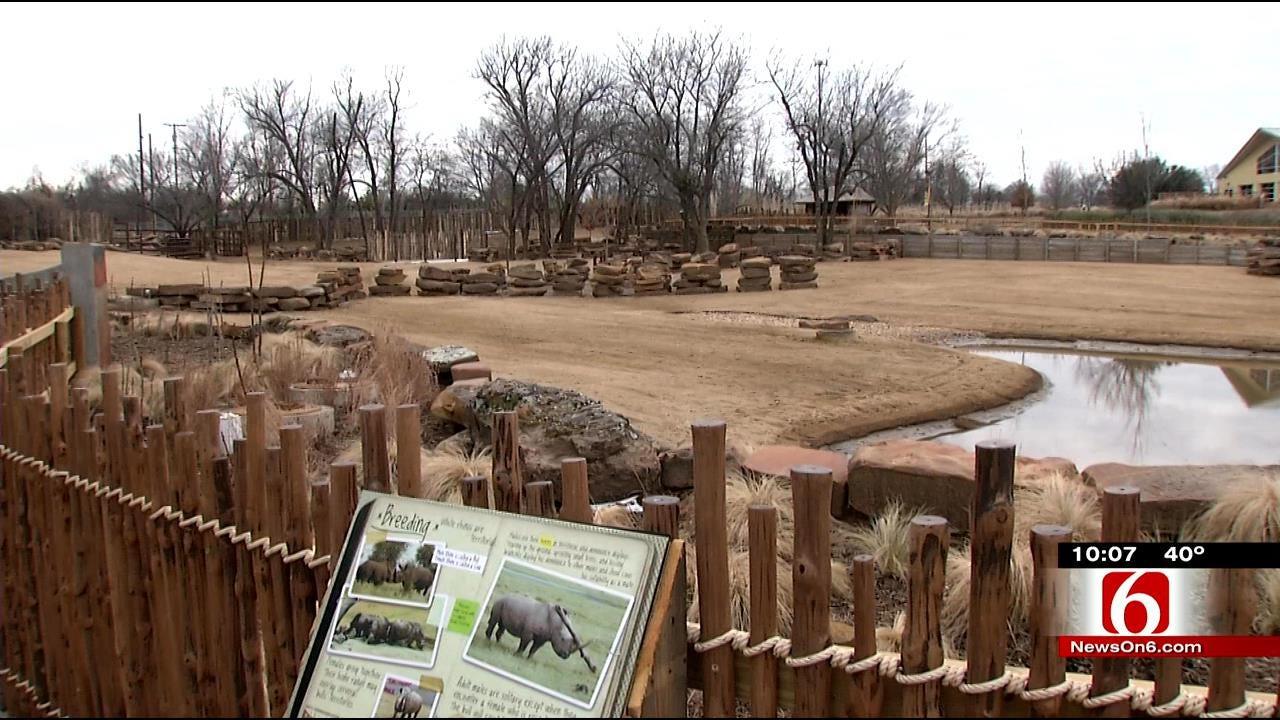 Funding, Space Determine If Zebras Return To Tulsa Zoo