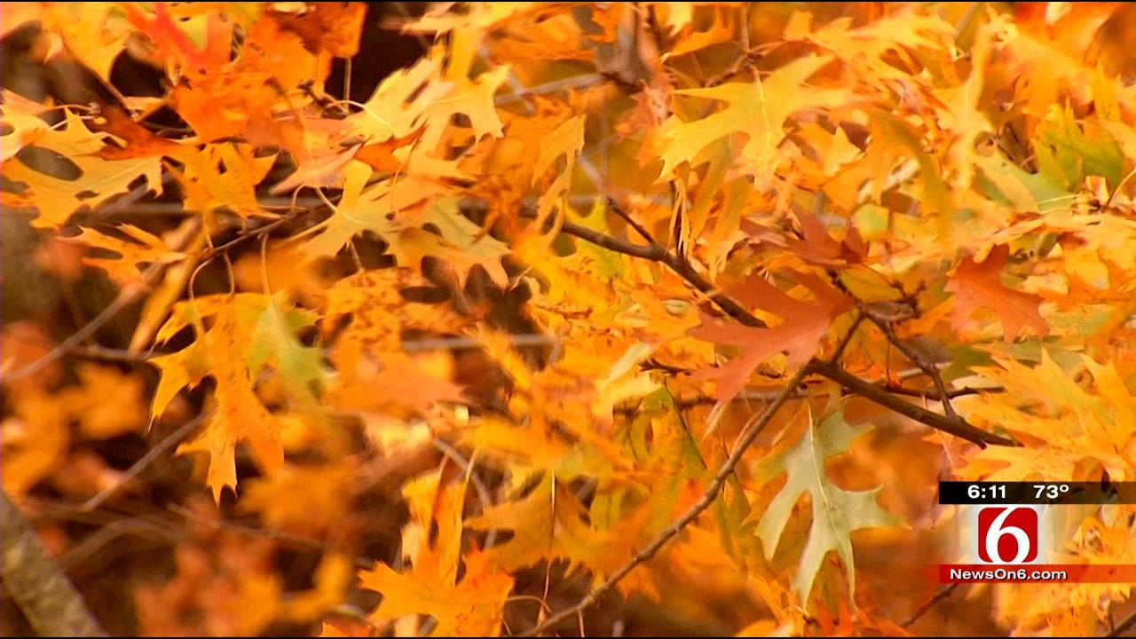 Cold Front Could Bring Early End To Oklahoma's Fall Foliage