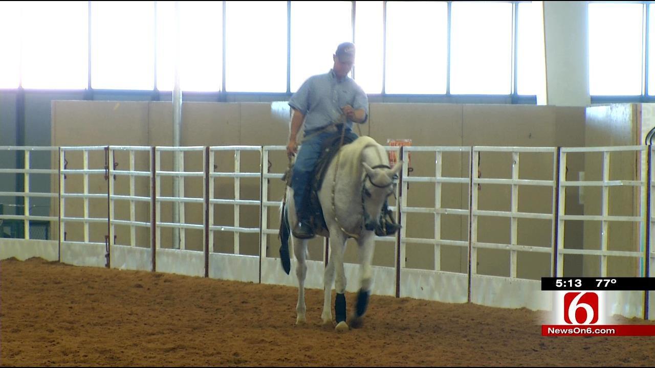 Arabian Nationals Show Kicks Off At Tulsa Fairgrounds