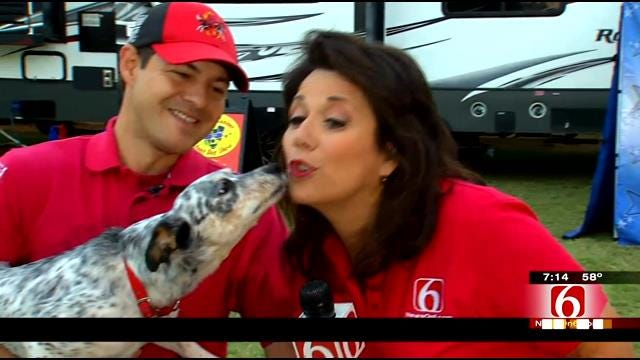 LeAnne Taylor Checks Out Amazing Dog Act At Tulsa State Fair