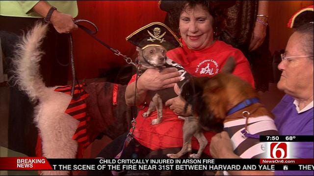Pet Adoption League 'Pirates' Party Ball'