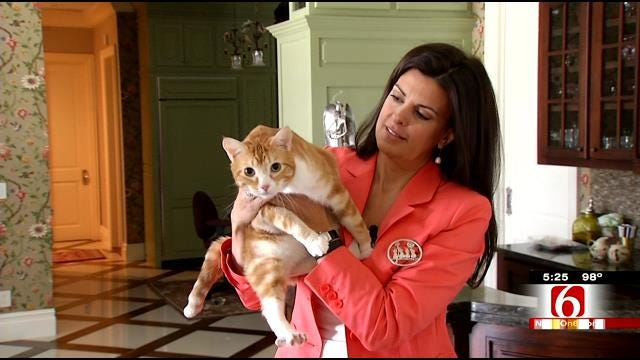 Master Of Disaster Opie Helps Out Washington County Shelter Cats