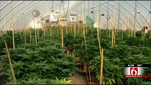 Oklahoma Candidates Find Common Ground On Medical Marijuana Use