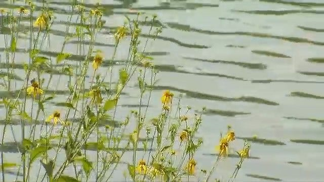 Woman Witnesses Drowning Death At Blue Hole Park