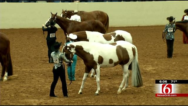 Expo Square Hosting One Of World's Biggest Paint Horse Shows