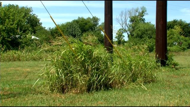 OSHA Investigates Mowing Accident That Electrocuted Nowata Man