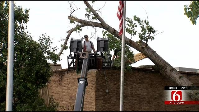 Storm Downs Trees, Leaves Some Damage In Adair