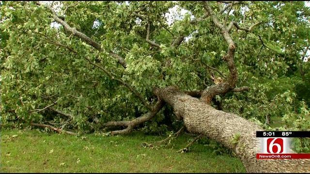 Okmulgee State Park EF-0 Tornado Does Surprising Amount Of Damage