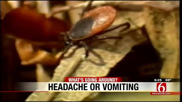 What's Going Around: Tick Bites And Stomach Flu