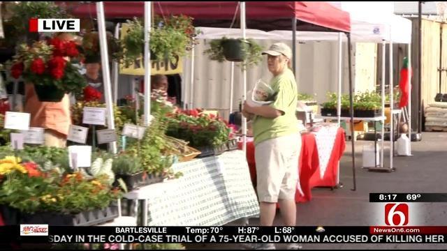 A Visit To Tulsa Brookside Farmers' Market