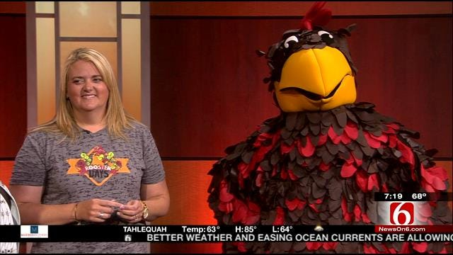 Roscoe T Rooster From Broken Arrow Rooster Days Visits 6 In The Morning