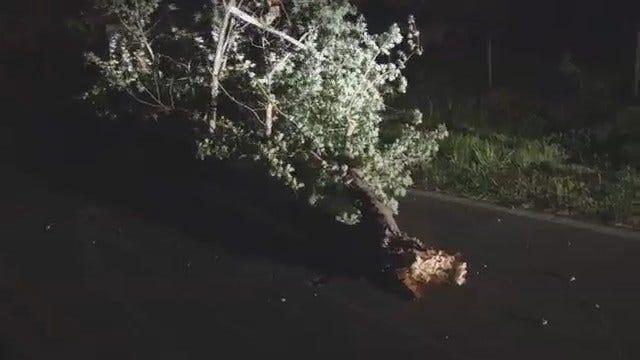WEB EXTRA: Tulsa County Wind Damage