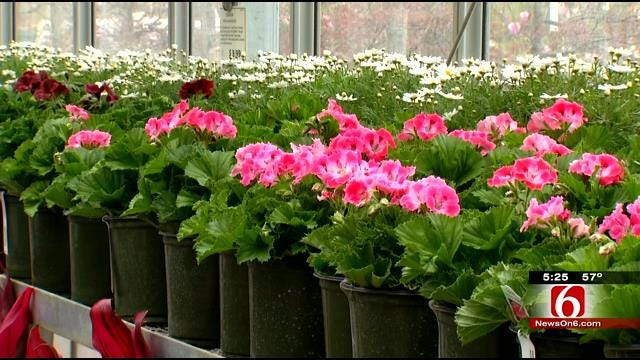 Hopes Of Good Weather Have Oklahomans Ready To Garden