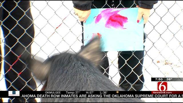 Wild Wednesday: Guinea Hog The Painter