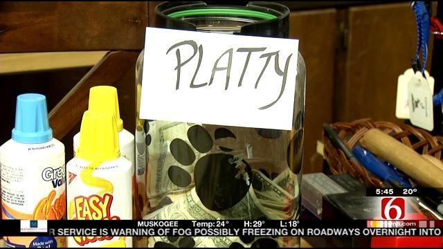 Tulsa Special Needs Dog 'Platty' Draws A Crowd