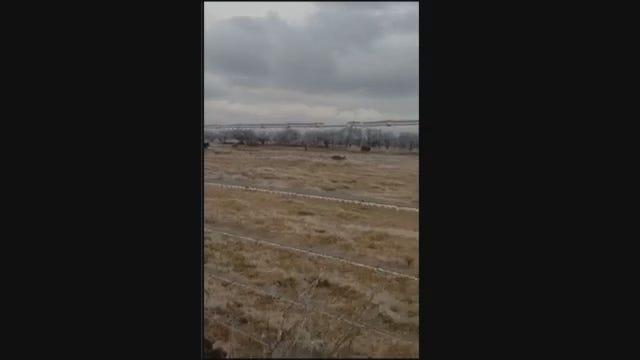 WATCH NOW: Oklahoma Hunter Shoots Video Of Kangaroo