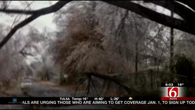 Viewer Video Shows Ice Covered Tulsa Tree Come Crashing Down