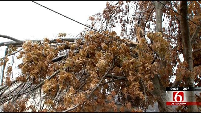Oklahoma Ice Storm Keep Tree Trimmers Busy