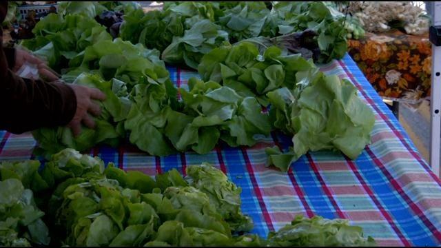 Cherry Street Farmer's Market Welcomes Spring