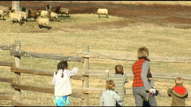 Claremore Farm Brings Christmas Tradition To Life