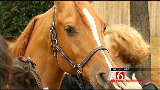 Tulsa's Little Lighthouse Kids Get To Meet Horse From Arabian Nationals