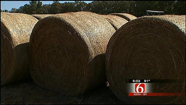 Oklahoma Ranchers, Hay Producers Help Creek County Fire Victims