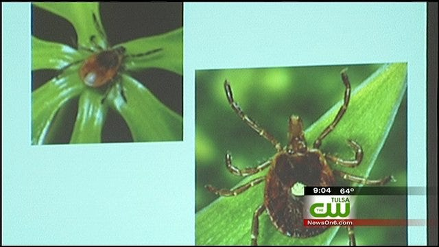 Wagoner Woman Contracts Rocky Mountain Spotted Fever From Tick Bite