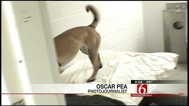 Tulsa County Jail Goes To The Dogs