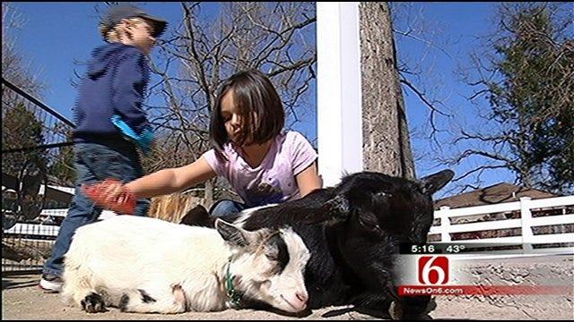 Spend Spring Break At The Tulsa Zoo