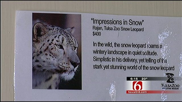 Animals At Tulsa Zoo Create Masterpieces For Fundraiser