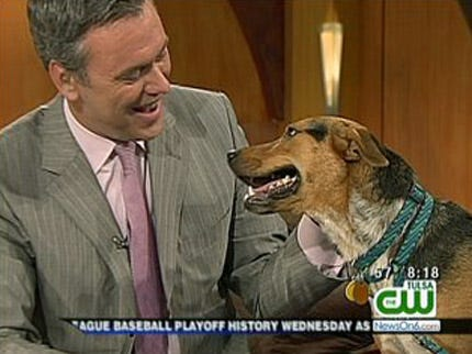 Radar The Weather Dog And His Trainer Talk About Who's The Boss