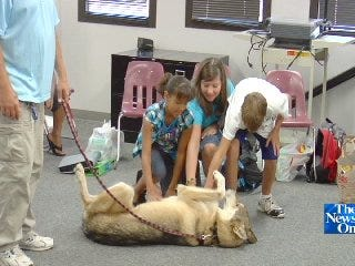 Real Timber Wolf Greets New Students at Thoreau Demonstration Academy