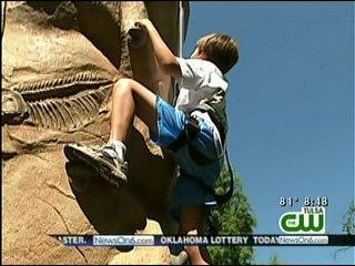 Wild Wednesday: Tulsa Zoo's New Rock Wall And Frogger Jump