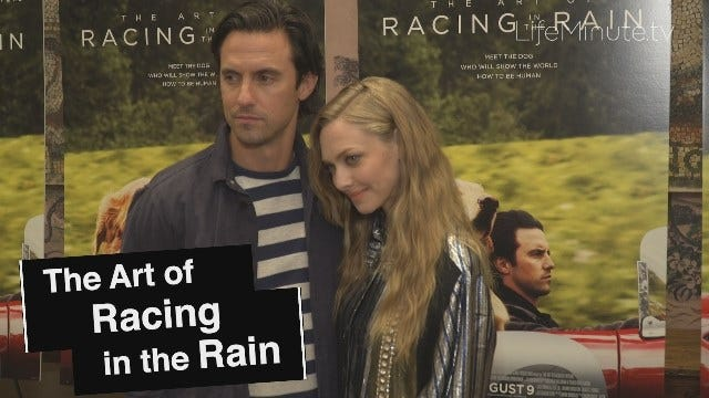 Milo Ventimiglia and Amanda Seyfried Share Chemistry On and Off the Screen at The Art of Racing in the Rain NYC Premiere
