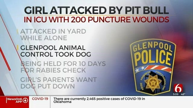 Glenpool Child In Intensive Care After Dog Attack