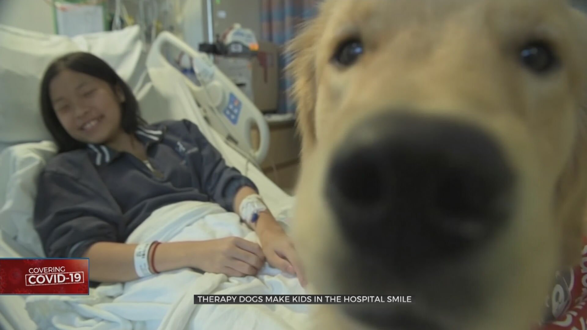During Pandemic, Therapy Dogs Bring Smiles To Kids In Hospital