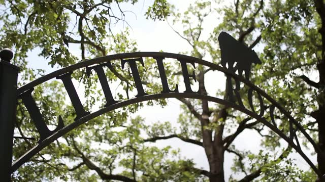 Little Rock Zoo Reopens After Positive COVID Test