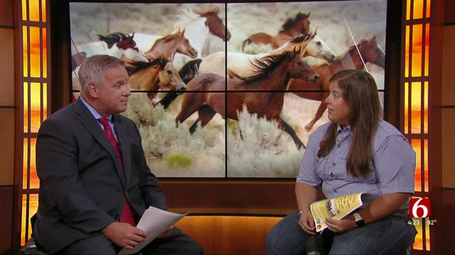 Two-Day Adoption Event In Tahlequah For Wild Horses, Burros