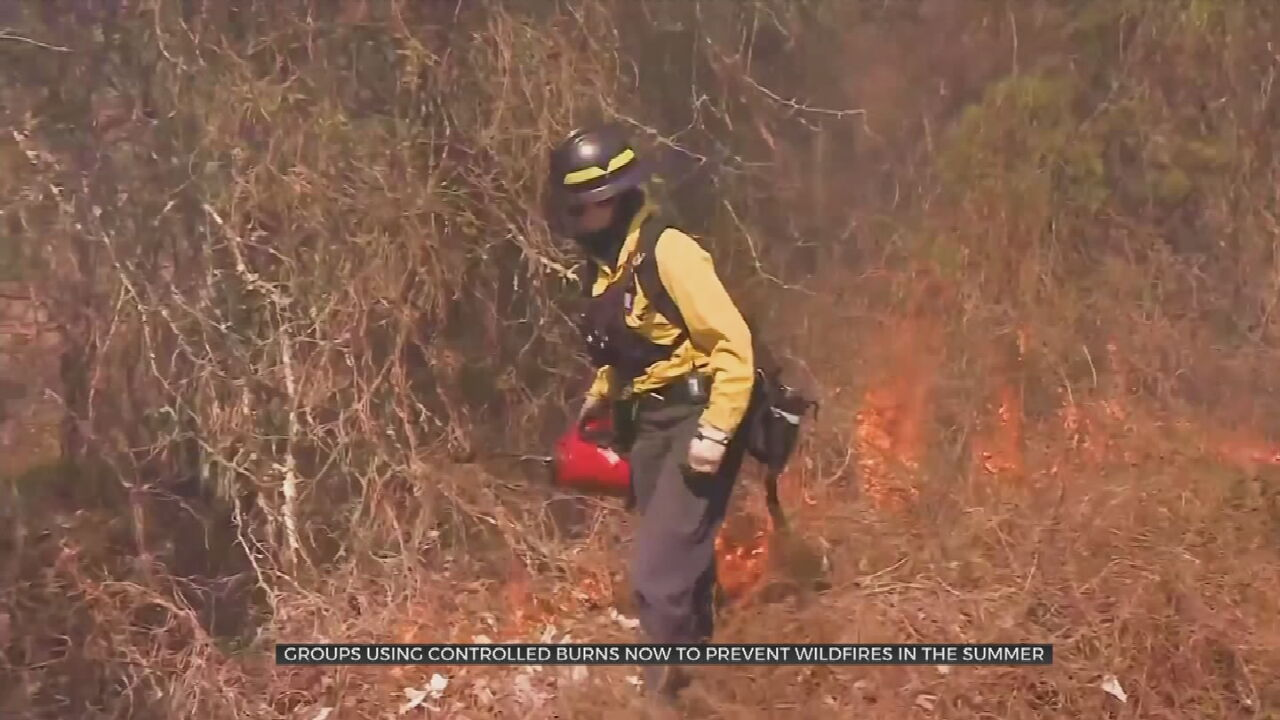 Conservation Groups Conduct Controlled Burns To Reduce Number Of Summer Wildfires