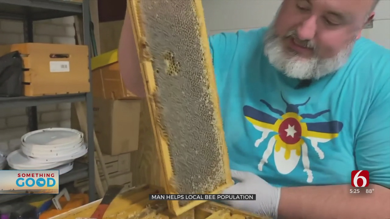 Tulsa Beekeepers Say Honey Supply Is Low After Winter Freeze Devastates Bee Population