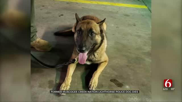 Former Muscogee Creek Nation Lighthorse Police Dog Dies