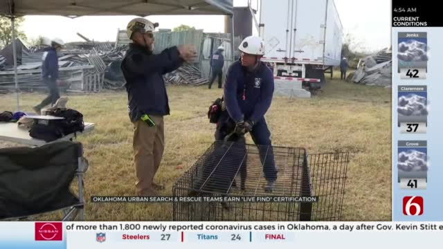 12 Dogs, Handlers Receive 'Live Find' Certification