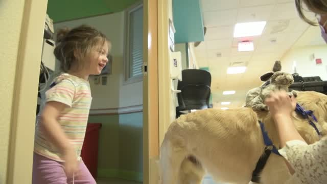 Therapy Dogs Visit Patients at Children's National Hospital in D.C.
